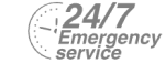 24/7 Emergency Service Pest Control in Camden Town, NW1. Call Now! 020 8166 9746